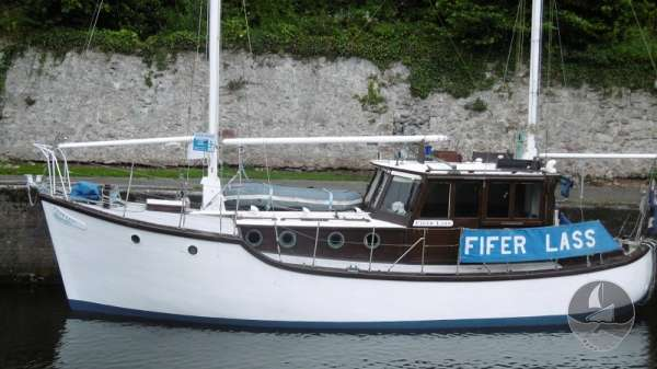 Miller Fifer 36 for sale