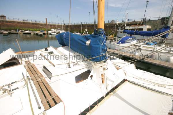 Wharram Tiki 30 The mast and main sail -