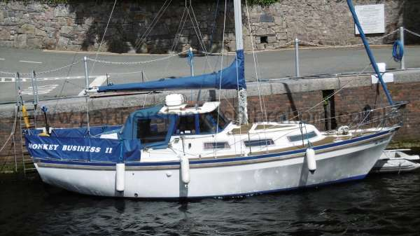 Meridian 31 for sale